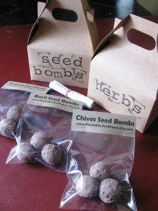 Housewarming/hostess/bff gift- Herb Garden Seed Bombs