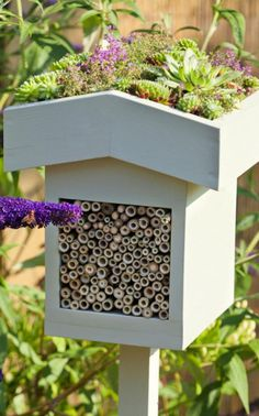 Add an insect house to your garden to provide nesting sites for solitary bees and insects.  Make your own but ensure it has a waterproof roof, or invest in a bespoke bee hotel such as the Big Insect Biome, £59.99 (wildlifeworld.co.uk).