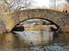 Ducks at Gapstow Bridge in Central Park, New York City