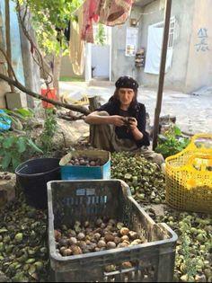 Kurdish Mother peeling off Walnuts. Kurdish Food, Kurdistan, Fruits And Vegetables, Woman, History, Life, Style, Art, Swag