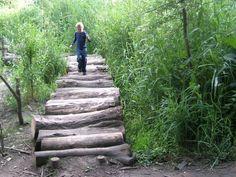Een pad van grove stammetjes