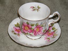 Paragon cup and saucer Prairie Rose from the Canadian Provincial flower series