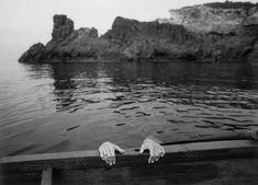 photography by Gianni Berengo Gardin, at Catania, in Sicily, Italy. - photography by Gianni Berengo Gardin, Film Photography, Street Photography, Vintage Photography, Creative Photography, Editorial Photography, Utopia Dystopia, Exposition Photo, Expositions, Catania