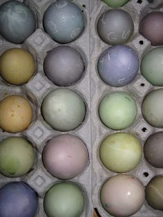 natural egg dye :)  try the red cabbage and vinegar for blue instead of blueberries :)