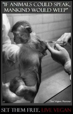 """DEMAND NIH: STOP FUNDING ANIMAL TORTURE!!!!!!! It is MORALLY & ETHICALLY REVOLTING for the NIH to continually resist a transition to the many cruelty-free and far more effective alternatives so readily available to the research community today! ENOUGH!!!!!!!!!! PLEASE SIGN & SHARE VIRALLY IN CONDEMNATION! """"Our fellow animals are not with us for the purpose of our experimentations. Improving the health of mankind does not obviate the suffering of animals."""" ~LaMark"""