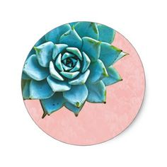 Shop Succulent Watercolor Pink Lace Classic Round Sticker created by Mistflower. Watercolor Design, Watercolor Illustration, Floral Watercolor, Cactus Stickers, Round Stickers, Black Succulents, Lace Background, Wedding Stickers, Diy Phone Case