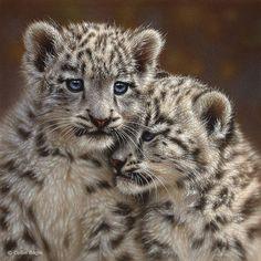 Wildlife Paintings, Wildlife Art Prints by Artist Collin Bogle..snow leopard babies