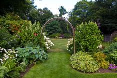 Arching arbored trellises allow for a variety of placements throughout your landscape to provide uninterrupted windows into your garden design. This trellis allows for an open walkway to a larger green, and helps separate large blooming hydrangea for a more enjoyable view.