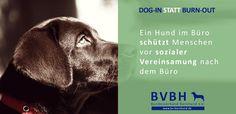 Infocard: Bürohund - Schützt vor Vereinsamung