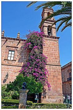 Esos colores que nos da la primavera que se suman a la belleza de #Morelia Ven y quédate con nosotros! Tenemos las mejores tarifas en el centro de la ciudad!