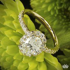 #1 Custom Oval Halo Diamond Engagement Ring