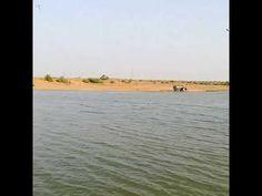 Wasser Teil2 in der indischen Wüste - YouTube Youtube Kanal, Jaisalmer, Reading, World, Outdoor, Indian, Water, Outdoors, Reading Books
