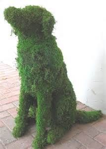 topiary - - Yahoo Image Search Results