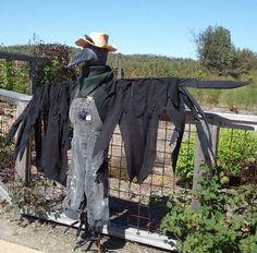 Not so scary scarecrow Fall Halloween, Halloween Porch, Halloween Crafts, Halloween Ideas, Scarecrows For Garden, Country Landscaping, Garden Landscape Design, Scarecrow Ideas, Scary Scarecrow