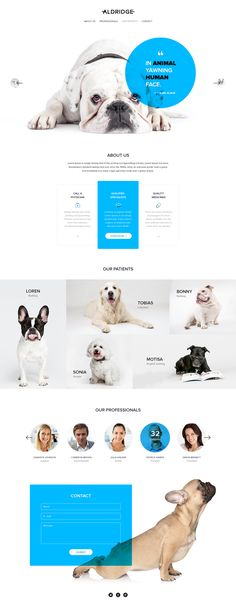 "Landing page ""Aldridge"" on Behance"