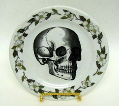 Anatomical Skull Plate wonder if i could find one lined w copper or silver?