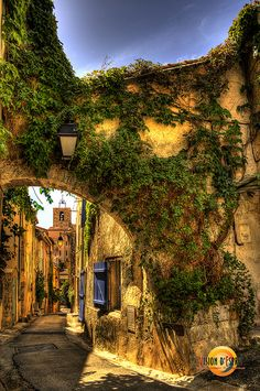 The town of Marlaison in OPPOSITES ATTACK: A Novel with Recipes Provencal was inspired by Hyeres, France
