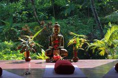 Vitaliser din ånd, sind og krop på gudernes Ø, Bali | 10. - 17. april 2016 - På dette vitaliserende og rensende yoga og meditations retræte, vil vi hver dag berige os selv med daglig yoga og meditation. Lækre og nærende måltider, saltvands pool, vandreture i gude skønne omgivelser, snorkling på stranden, tempel besøg og en helt speciel renselses ceremoni.