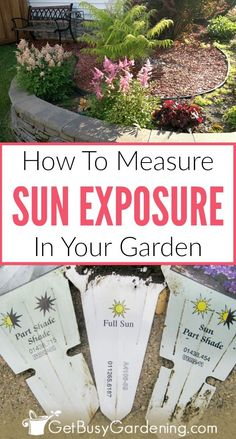 It's easy to figure out how much sunlight your garden gets by simply tracking it throughout the day. Follow these detailed step-by-step instructions to determine the sun exposure in your garden.