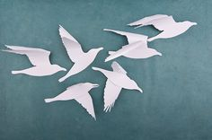 A Flock of Seagulls: White Bird Wall Art 6 White by hipandclavicle