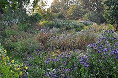 Staudengarten Gross Potrems: Blütenrausch im Oktober