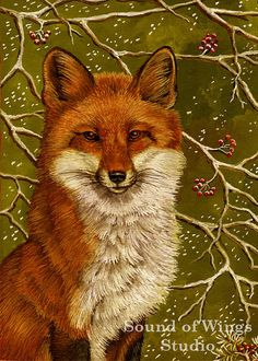 "Red Fox 5"" x 7"" Archival Art Print"