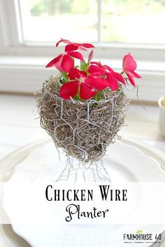Make an Easy and Elegant Chicken Wire I want these for our Christmas table with small evergreens or holly.