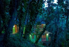Cushioned, carpeted and curtained with greenery, Kanopi House's treehouses are set deep in the rainforest, flanked by vine-wrapped banyans. Treehouse Living, Mr And Mrs Smith, Birds Eye View, Dream Vacations, Jamaica, Greenery, Beach House, Home Goods, Exterior