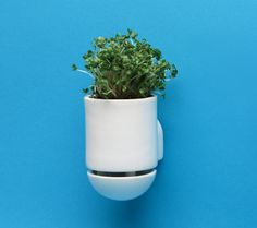 Combination Planter/Handle from LEO the Maker Prince - 3DFileMarket.com