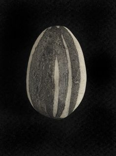 """Detail of a single, hand-crafted porcelain seed from """"The Unilever Series: Ai Weiwei Sunflower Seeds."""""""