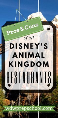 Not sure where to eat at Disney's Animal Kingdom? | Check out this comprehensive list of all your options | Disney World | Disney Dining Plan | Table Service | Quick Service | Disney Snack credits