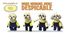 minion dog costume | For Sale: More minions, more despicable... minion costumes for dogs!!