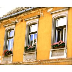 Hungary Photo - Hungarian Window Boxes - Yellow Photograph - Sopron -... ($30) ❤ liked on Polyvore