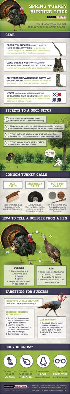 Spring Turkey Hunting Guide