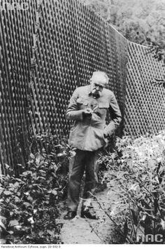 Marszałek Józef Piłsudski w Zaleszczykach, 1933-09.  http://audiovis.nac.gov.pl/obraz/218126/013407a30a9fb9ebd0330a0be5ba6446/