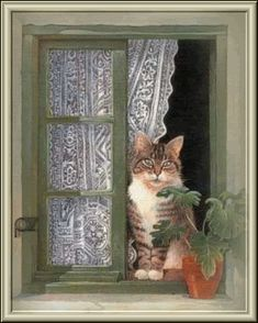 Cats at Their Windows by Lesley Anne Ivory Like A Cat, I Love Cats, Cute Cats, Cat Embroidery, Amor Animal, Cat Window, Cat Drawing, Beautiful Cats, Pet Portraits