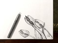 How to Draw Beautiful Floral Art with Pens Pencil Art Drawings, Art Drawings Sketches, Easy Drawings, Flower Art Drawing, Flower Drawing Tutorials, Art Journal Techniques, Drawing Techniques, Learn To Draw Flowers, Drawing Skills