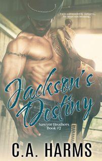 Jeris Book Attic Tour Blog: Blog Tour:  Jackson's Destiny by CA HARMS