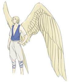 France - François The most beautiful pale golden wings of all. There's no other with such perfection.