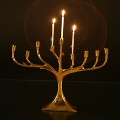 Lunares hand cast in their special alloy and plated with 24k gold. The menorah is inspired by California's Manzanita Tree.