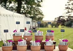 potted escort card tags   Photo by Marianne Taylor