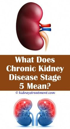Kidney disease symptoms back pain chronic kidney disease facts,kidney disease recipes chicken kidney transplant recipient,renal disease stages kidney care products. Causes Of Kidney Disease, Kidney Dialysis, Kidney Disease Symptoms, Polycystic Kidney Disease, Yoga Routine, Diy Beauty Hacks, Kidney Detox, Kidney Cleanse, Healthy Kidneys