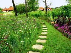 Znalezione obrazy dla zapytania łąka kwietna w ogrodzie