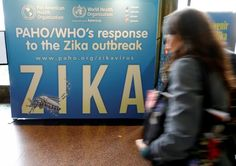 Drug developer Inovio Pharmaceuticals Inc and its partner GeneOne Life Sciences Inc said they had received approval from U.S. regulators to start an early stage human trial testing their #Zika vaccine.