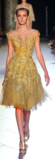 Couture Fall 2012 - Elie Saab