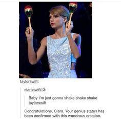 Taylor Swift Meme, Taylor Swift Posters, Taylor Alison Swift, Taylors, Pop Singers, Celebs, Celebrities, Tumblr Funny, Thunder