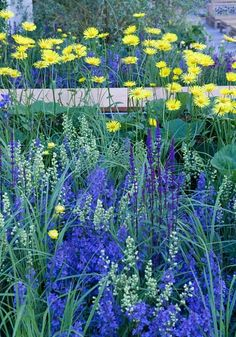The science of a colourful and successful garden - Telegraph