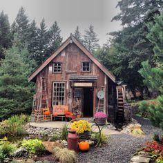 Pumpkin Hollow. Albany Oregon!