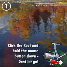 How to play Fishing World