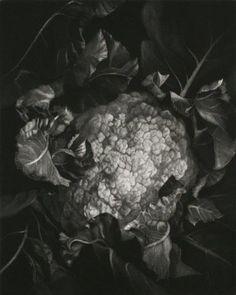 Judith Rothchild. Choufleur. Mezzotint 13/75. 9 3/4 x 7 3/4 inches.